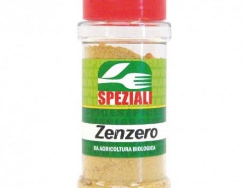 Zenzero polvere