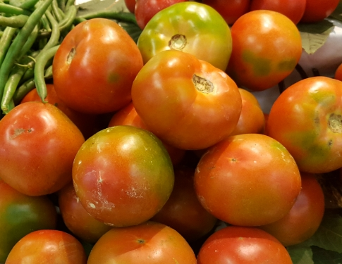 Pomodori Insalatari