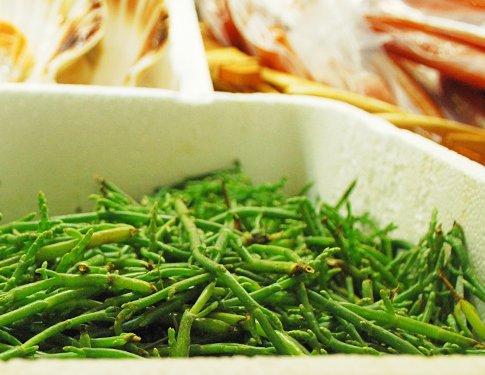 Asparagi di Mare (Salicornia)