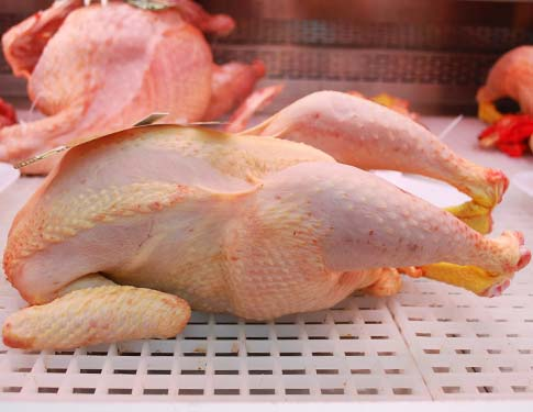 Pollo San Bartolomeo Biologico